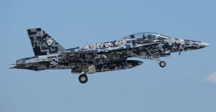 FA 18 Super Hornet 100 years of naval aviation livery