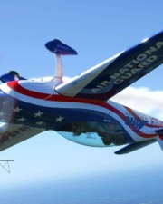 Can Airplanes Fly Upside Down (How's It Done?!)