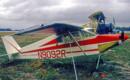 Acro Sport Nesmith Cougar
