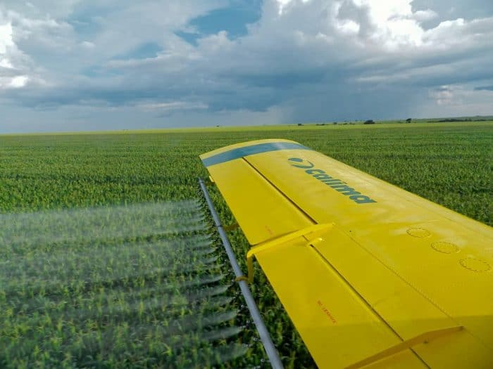 Wing view of crop duster plane spraying corn