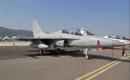 Republic of Korea Air Force KAI FA 50 Golden Eagle