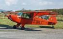 Piper J 5 Cub Cruiser G BRLI