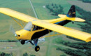 PA-11 Cub Special