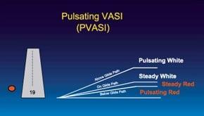 pulsating vasi