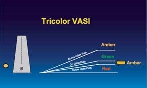 tricolor vasi