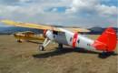Fairchild 24W 41A 1