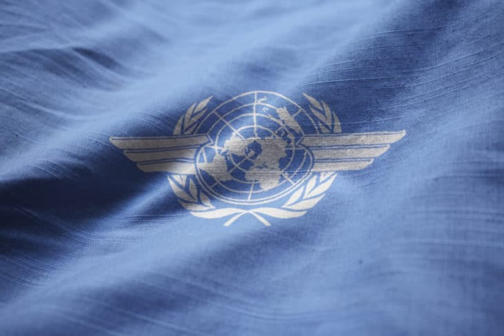 International Civil Aviation Organization Flag