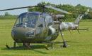Westland Scout AH.1 'XW612