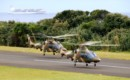 Pair of South African Air Force SAAF A109 LUHs landing in formation