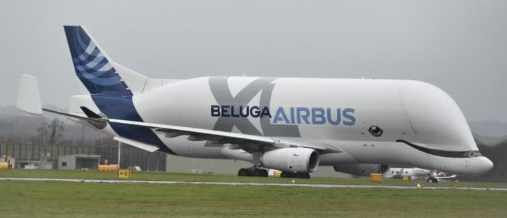 Beluga XL of Airbus Transport International