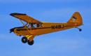 AVIAT AIRCRAFT INC A 1C 180 Husky